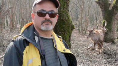 محمد درویش - فعال محیط زیست