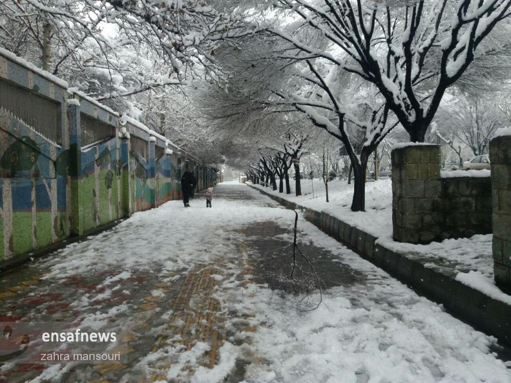 photo_2018-01-28_16-51-29