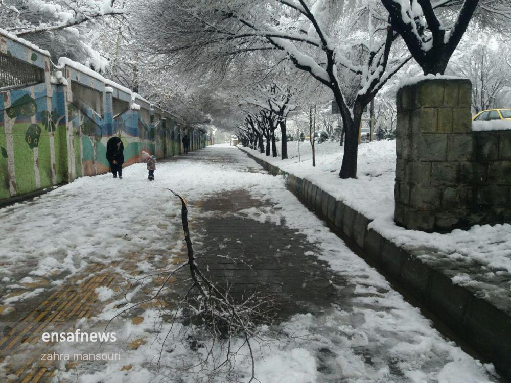 photo_2018-01-28_16-51-37