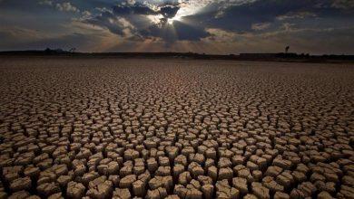 خشکسالی امسال بی سابقه است