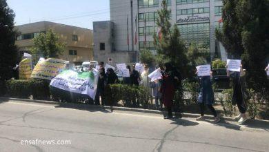 عکس   تجمع پزشکان معترضان به سهمیهها