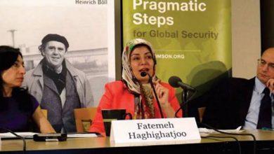 فاطمه حقیقت جو: شروط آقای خامنهای عملیاتی شود