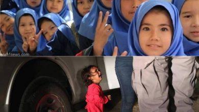 «خوبیهایمان به مهاجران افغانستانی دیده نمیشود»