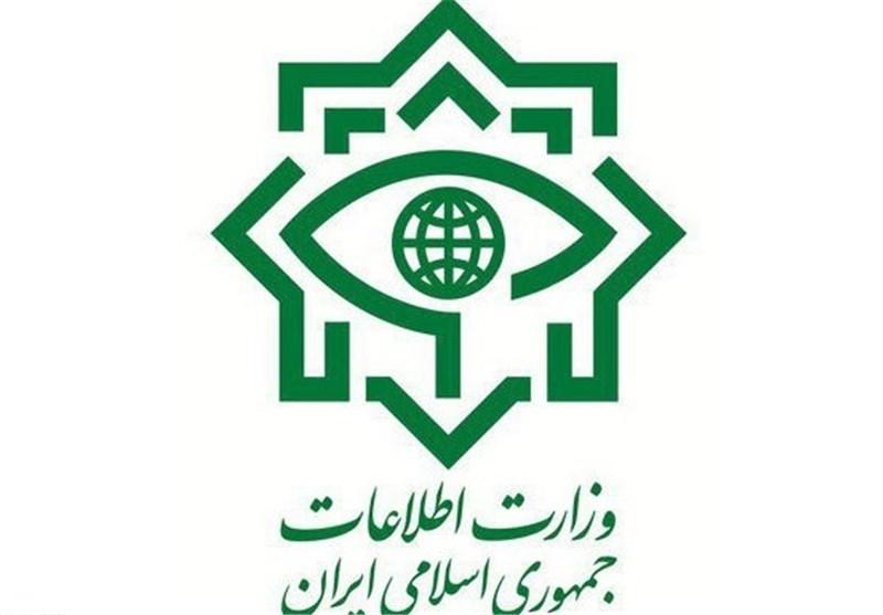پاسخ وزارت اطلاعات به اظهارات یک نماینده مجلس درباره مدیران دوتابعیتی