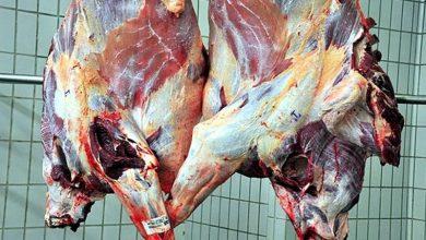 درخواست دبیر انجمن واردکنندگان گوشت از نهادهای نظارتی