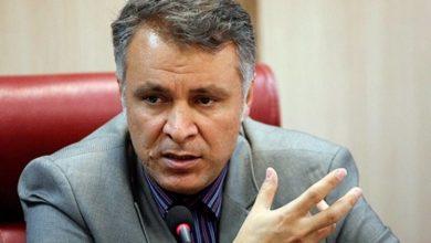 محمد فاضلی