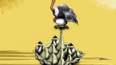کارتون | «اقتصاد تخم مرغی»