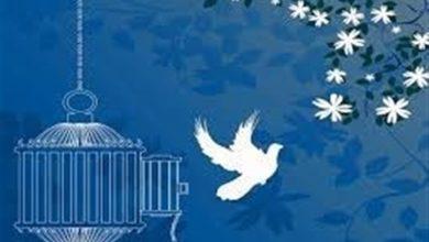 گزارشی از «آزادی ۴۰ هزار زندانی در دوره تحول قوه قضائیه»