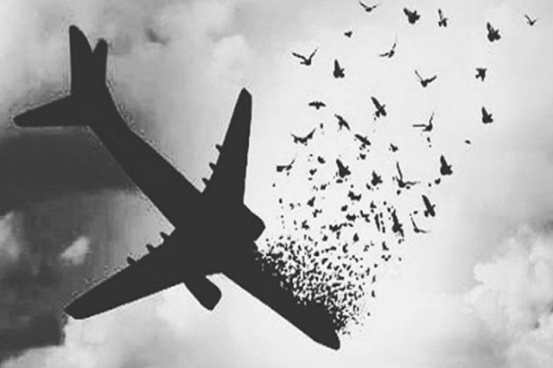 ضعف رسانه در پوشش ماجرای هواپیمای اوکراینی