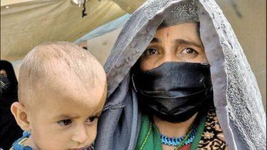 طالبان، افغانستان و ایران | محسن کدیور
